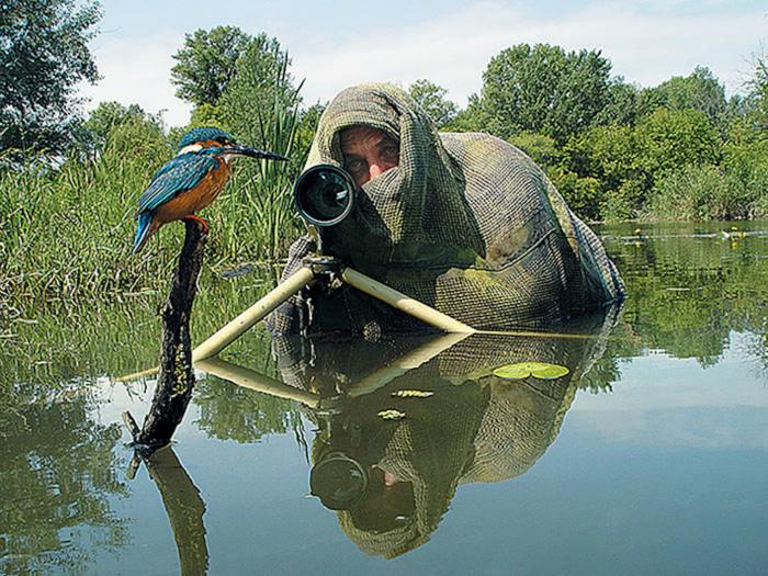 «Не бойся птичка, я просто водоросль!» | Фото: Обхохочешься.