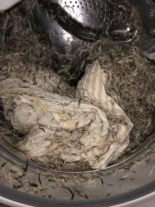 «Не понял, почему в моей машинке вместо подушки какие-то ошметки курицы!?»