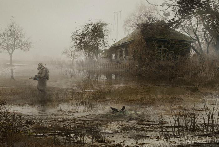 Густой туман на болоте в России.