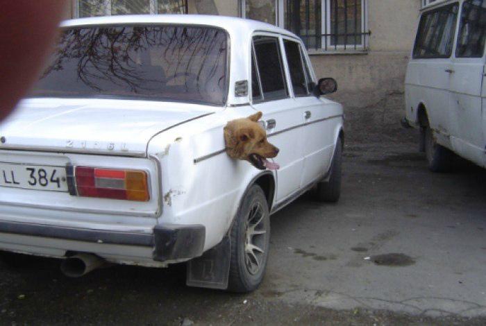 Веселый сторож. | Фото: izhevsk.ru.
