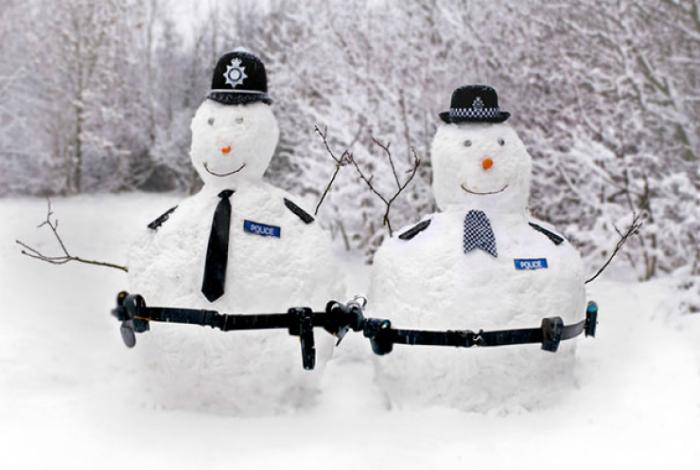 Снежные стражи порядка.