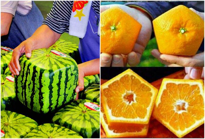 Квадратные фрукты. | Фото: Deskgram.