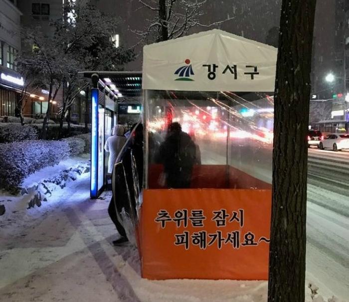 Укрытия от холода. | Фото: boom.ms.