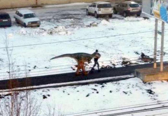 Динозаврик на выгуле.