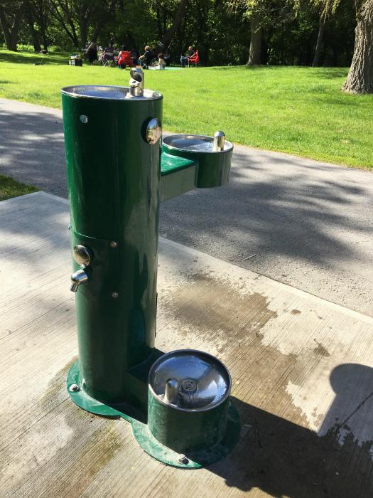 Фонтанчик с питьевой водой. | Фото: Reddit.