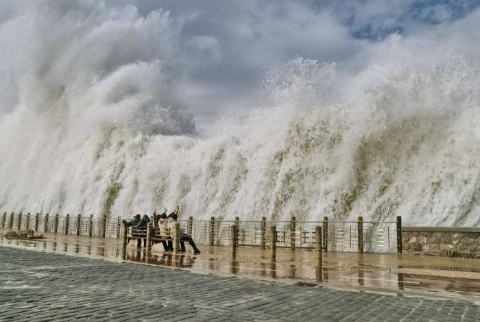 «Увидимся в открытом море...» | Фото: Alatshop.