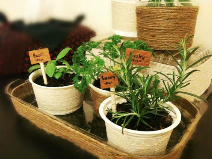 Пластиковые контейнеры для растений.