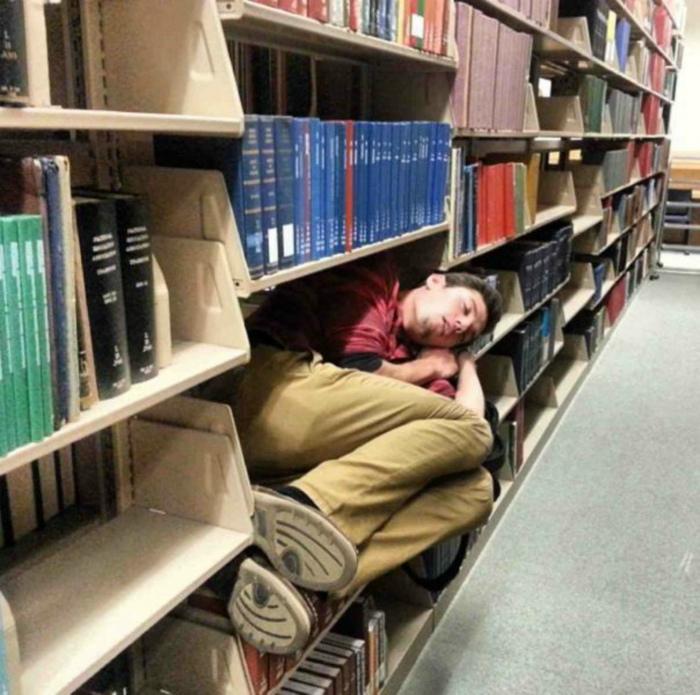 Спать в библиотеке.