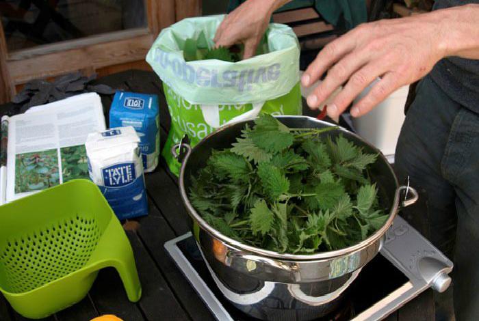 Органическое удобрение из крапивы.