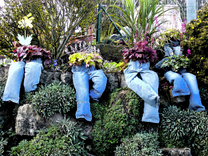 Клумби в старих джинсах.