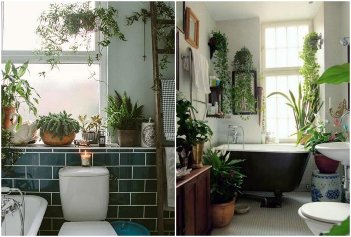 Живые растения в ванной комнате.