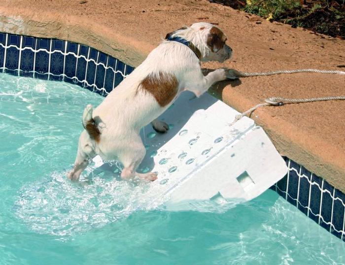 Пандус для бассейна.