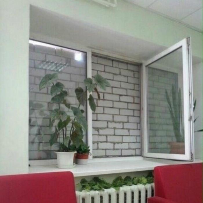 Очень странный вид из окна... | Фото: Mystalk.