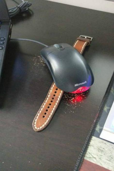 Предотвратить переход компьютера в спящий режим. | Фото: Catfactsblog.info.