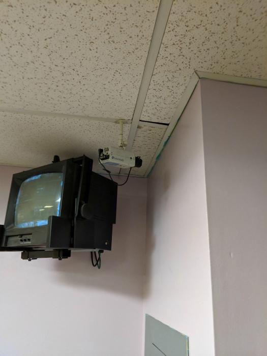 Наблюдение за стеной. | Фото: Reddit.