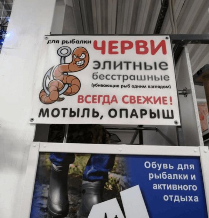 Даже черви теперь элитные. | Фото: Новости N.
