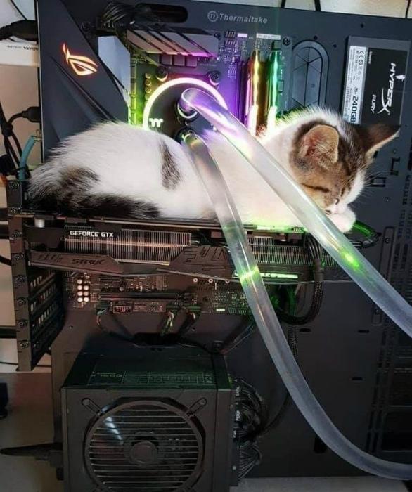Усилитель процессора. | Фото: AdMe.