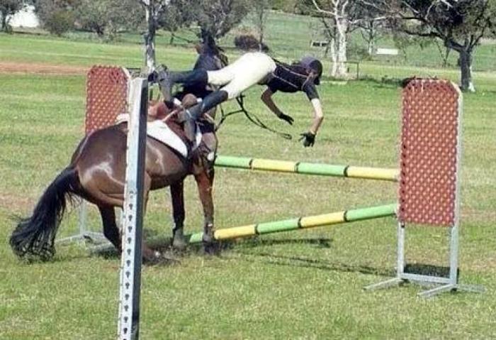 Кажется, конь взялся за дрессировку наездника. | Фото: Drollify.