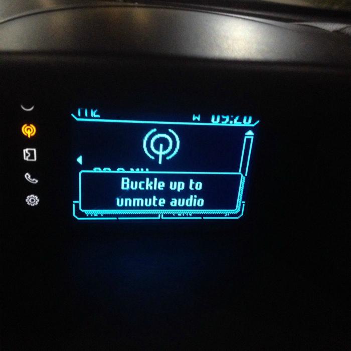 Система безопасности в авто. | Фото: Viral Dog.