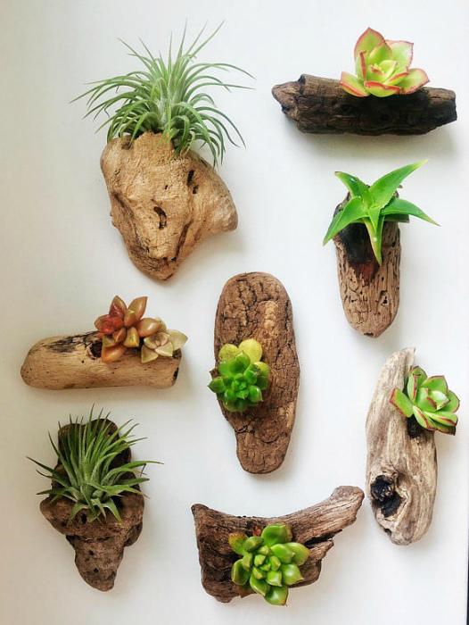 Горшочки из древесной коры.