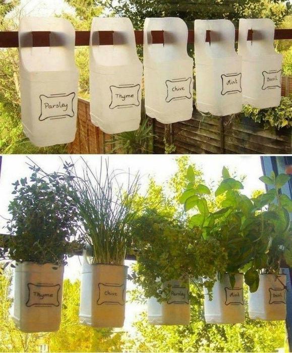 Самодельные горшки для зелени. | Фото: Pinterest.