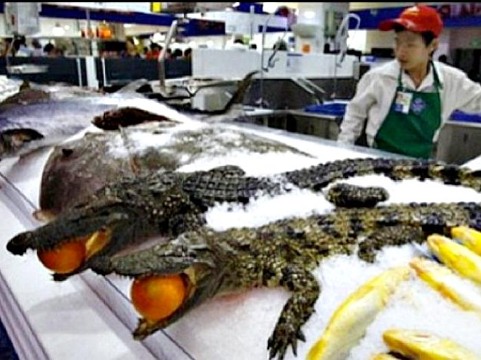 Крокодилы в мясном отделе.