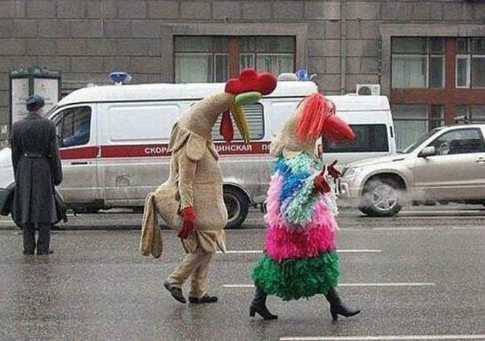 Идеальная пара. | Фото: ok.ru.