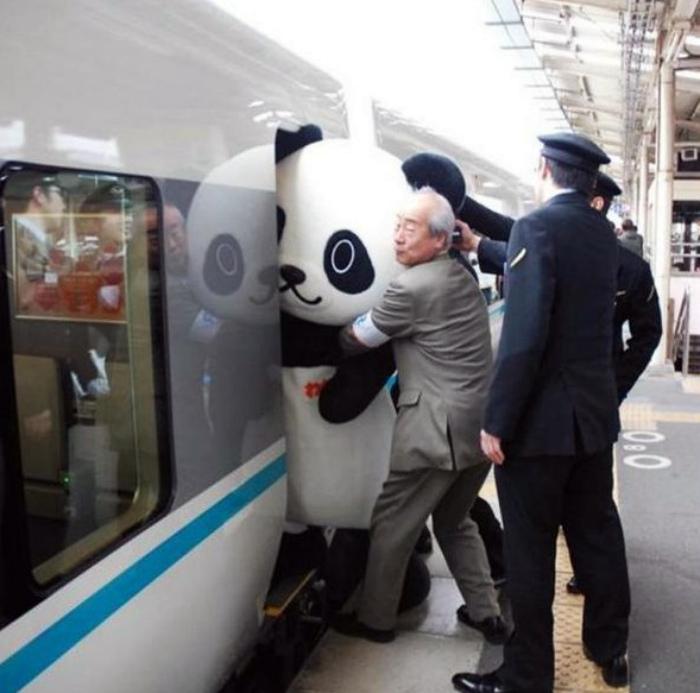 «Помогите панде поместиться в вагон!»