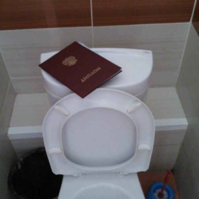 «Перечитываю диплом в туалете. Отлично поднимает самооценку.»