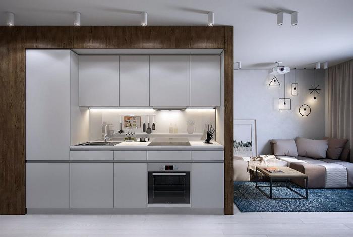 Кухня-гостиная в стиле модерн.