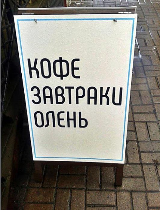 Олень - это неожиданно! | Фото: Тематический форум ВМЕСТЕ.