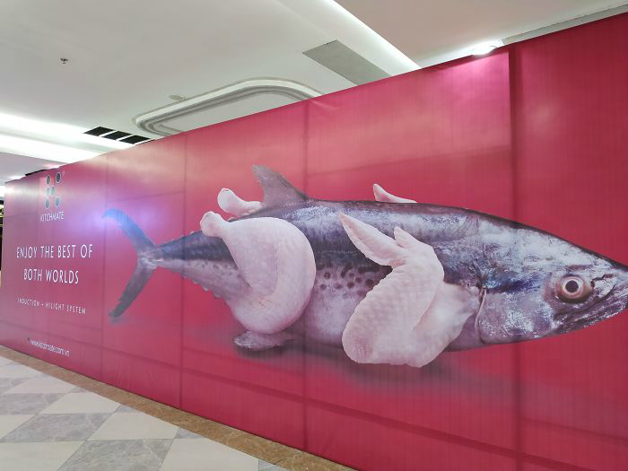 Надо же, какая аппетитная рыба! | Фото: Reddit.