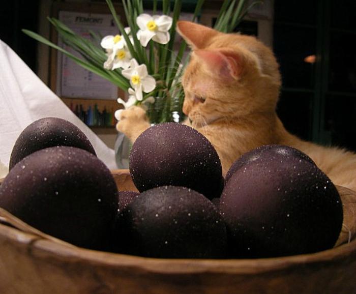 Яйца, окрашенные вином.