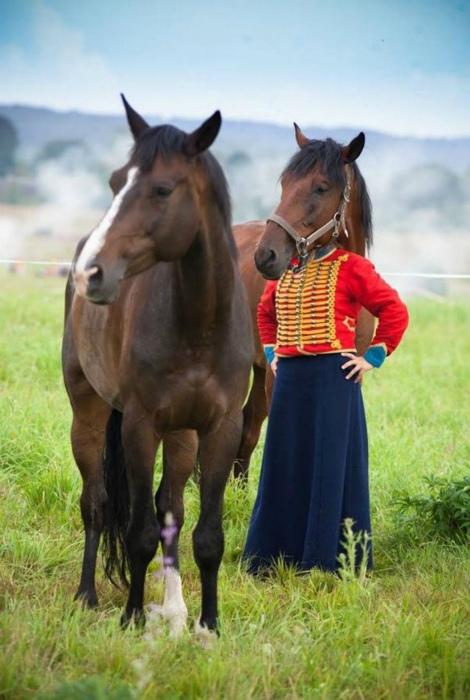 Лошадь - еще ничего, у кого-то, вообще, тело собаки!| Фото: BuzzFeed.