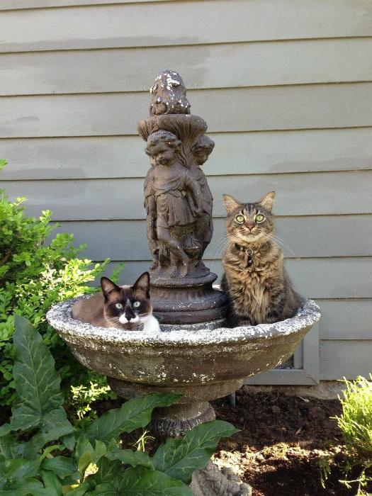 Сладкая парочка в фонтане. | Фото: Pinterest.