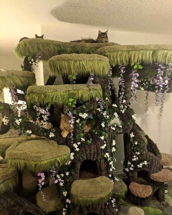Роскошный домик для кота. | Фото: PlaytimeWorkshop.