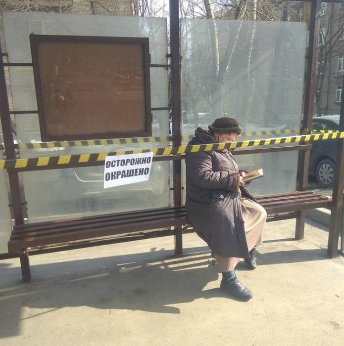 Когда человек читает, но не все подряд! | Фото: TopeViral!