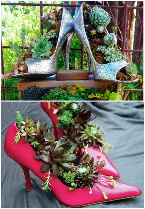 Квіткові горщики з туфель.