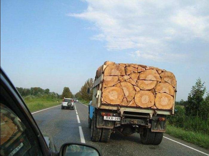 Тот, кто складывал древесину, знает толк в порядке! | Фото: LinkedIn.