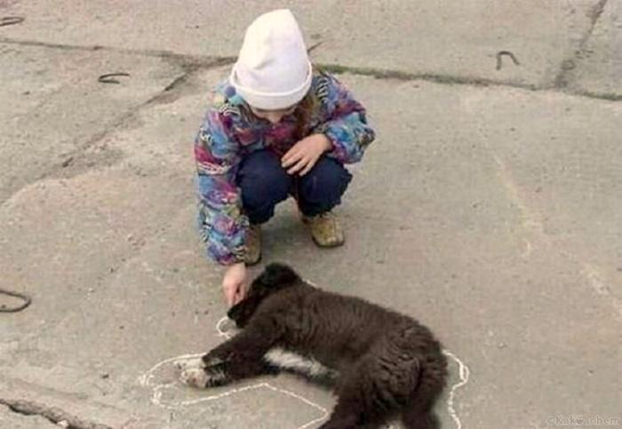 «Если друг попал в беду, друга мелом обведу...» | Фото: magSpace.ru.