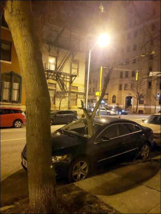 «Вот из моей машины что-то и выросло...» | Фото: Прикол.ру.