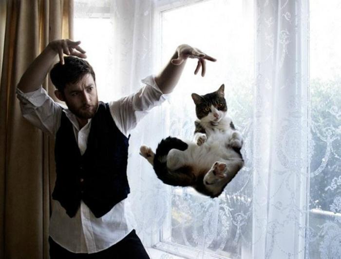 Манипуляции с котом. | Фото: Clipmass.com.