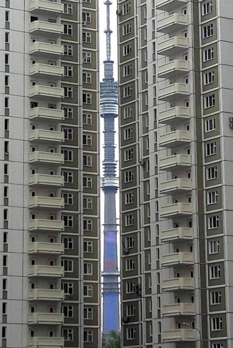 Лучший вид на Останкинскую башню. | Фото: VKMag.