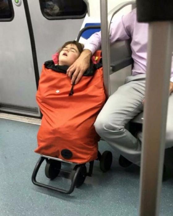 Безбилетный пассажир в сумке.