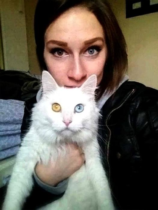 Кошка и хозяйка.