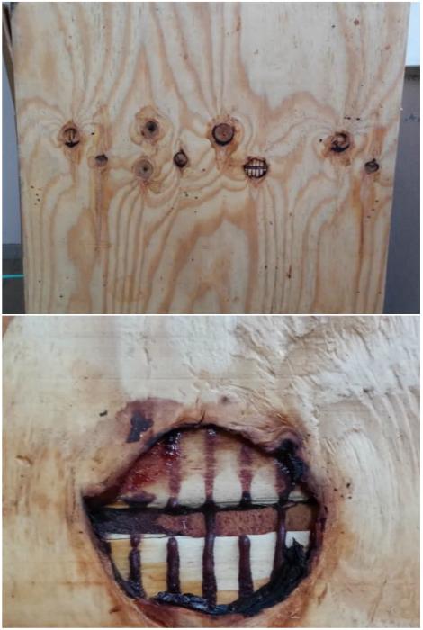 Оказывается, что даже у дерева есть зубы.