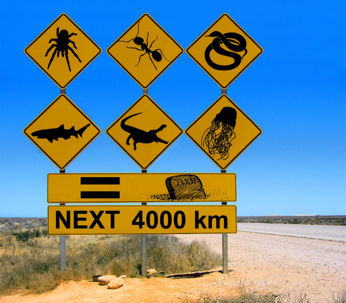 Хорошо однако в Австралии.