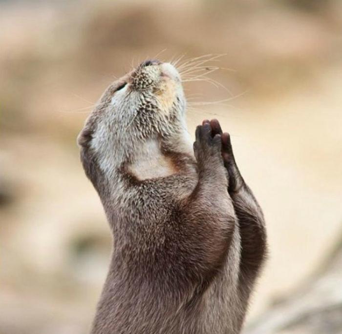 Молитва.