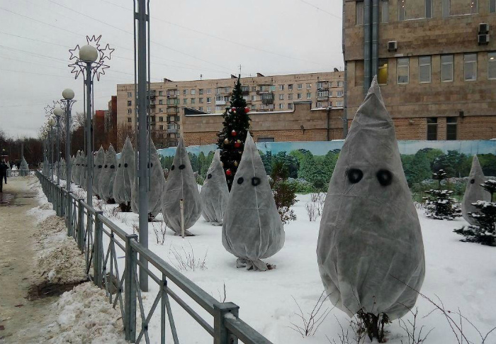 Очаровательные елки. | Фото: Reddit.