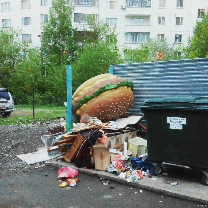 Больше никаких бургеров! | Фото: Пикабу.